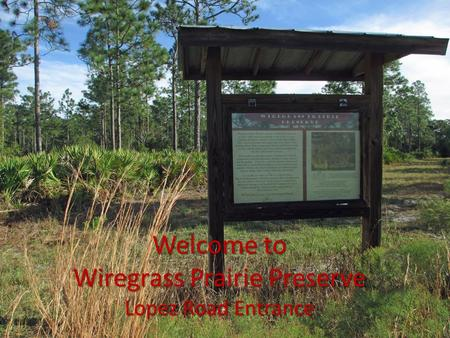 Welcome to Wiregrass Prairie Preserve Lopez Road Entrance.