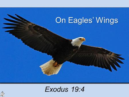 On Eagles' Wings Exodus 19:4. Strength of God Saves from the Bondage of Sin God's power to save us from our sins –Israel from Egypt, Exodus 13:3 –Completely.