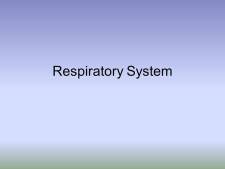 Respiratory System. Upper Respiratory System –Nose –Nasal cavity –Pharynx Lower Respiratory System –Larynx –Trachea –Bronchi –Lungs.