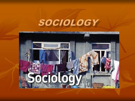 What is sociology? Step Two Key Words Essential Questions Headings Step One Don't copy word from word off of slides You can use diagrams, charts,