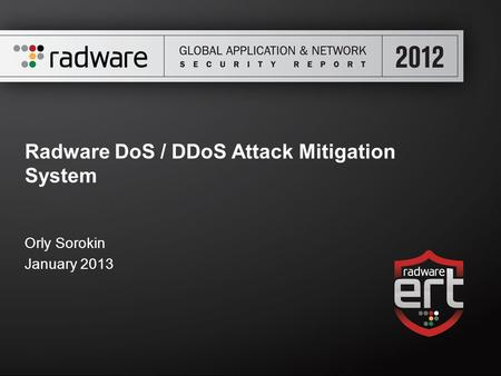 Radware DoS / DDoS Attack Mitigation System Orly Sorokin January 2013.