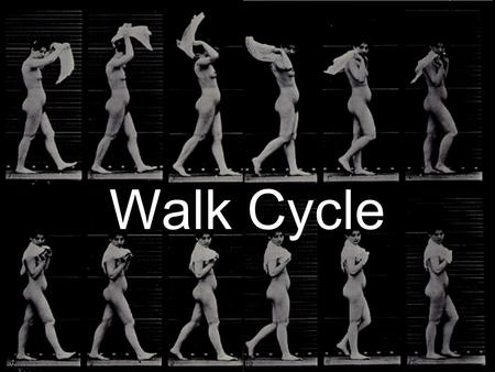 Walk Cycle. Basic Complete Walk Cycle Start with the Contact Pose.