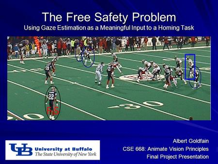 The Free Safety Problem Using Gaze Estimation as a Meaningful Input to a Homing Task Albert Goldfain CSE 668: Animate Vision Principles Final Project Presentation.
