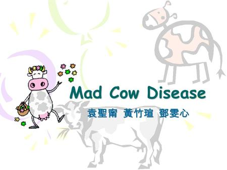 Mad Cow Disease 袁聖甯 黃竹瑄 鄧雯心. What is Mad Cow Disease ? A kind of transmissible spongiform encephalopathies (TSE) Occurs in many mammals, including human.