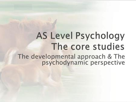 The developmental approach & The psychodynamic perspective.