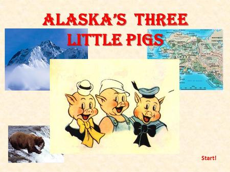 Alaska's three little pigs Start!. Once upon a time there were 3 little pigs. The whole summer they were hiking, camping and fishing The first autumn.