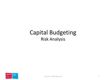 Capital Budgeting Risk Analysis 1Finance - Pedro Barroso.