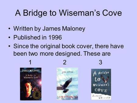 bridge to wisemans cove essay topics