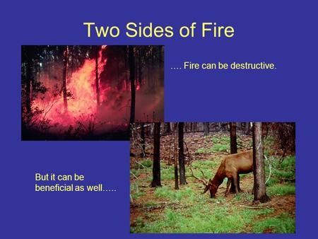 Two Sides of Fire …. Fire can be destructive. But it can be beneficial as well…..