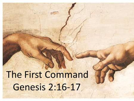 The First Command Genesis 2:16-17. The First Command What can we learn about The Lawgiver from the laws He gives? What are the characteristics of His.