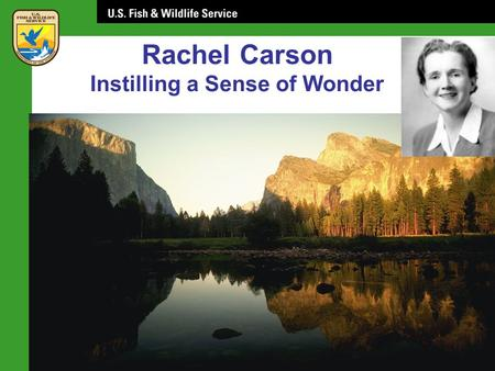 Rachel Carson Instilling a Sense of Wonder. Rachel Carson: Role Model Yale Collection of American Literature Beinecke Rare Book & Manuscript Library.