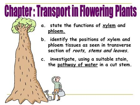 Chapter : Transport in Flowering Plants
