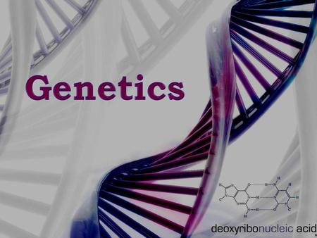 Genetics  The members of this family tree are related and so they share certain similar characteristics. So why don't all family members look exactly.