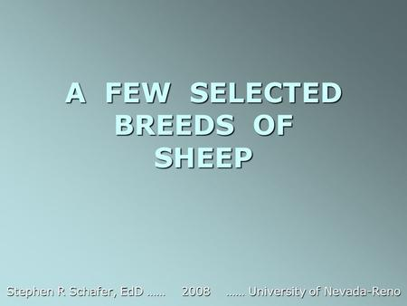 A FEW SELECTED BREEDS OF SHEEP Stephen R Schafer, EdD …… 2008 …… University of Nevada-Reno.