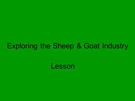 Exploring the Sheep & Goat Industry