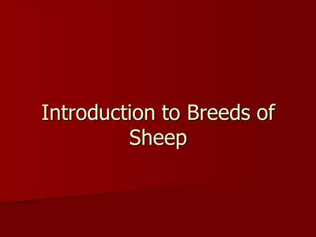 Introduction to Breeds of Sheep. What will we be learning? Today we will looking at the history on Sheep Production. Today we will looking at the history.