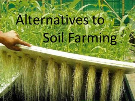 Alternative Methods: Soiless Farming Alternatives to Soil Farming.