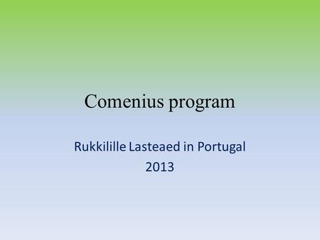 Comenius program Rukkilille Lasteaed in Portugal 2013.