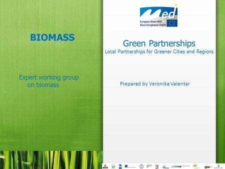 Green Partnerships Local Partnerships for Greener Cities and Regions BIOMASS Expert working group on biomass Prepared by Veronika Valentar.
