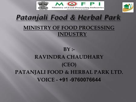 Patanjali Food & Herbal Park