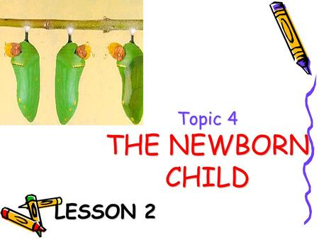 Topic 4 THE NEWBORN CHILD
