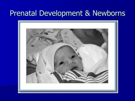 Prenatal Development & Newborns. 1.How soon after conception does brain begin to form? 2.What are the 4 parts of the brain and the function of each?