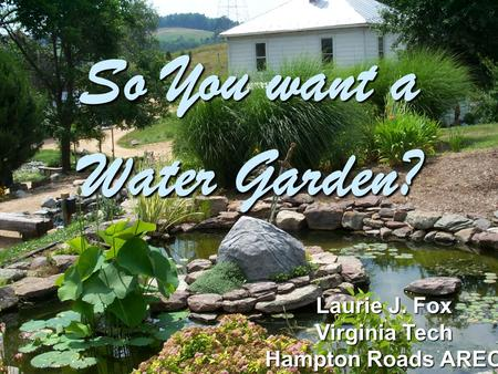 So You want a Water Garden? Laurie J. Fox Virginia Tech Hampton Roads AREC.