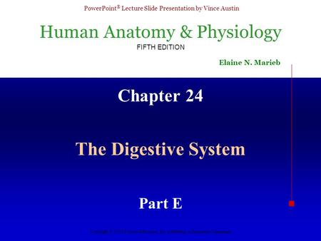 Chapter 24 The Digestive System Part E.