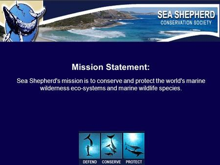 Mission Statement: Sea Shepherd's mission is to conserve and protect the world's marine wilderness eco-systems and marine wildlife species.