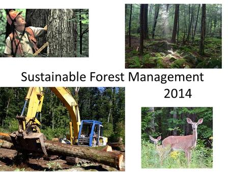 Sustainable Forest Management 2014. Why is the sustainability of forests so important? (Anthropocentric)