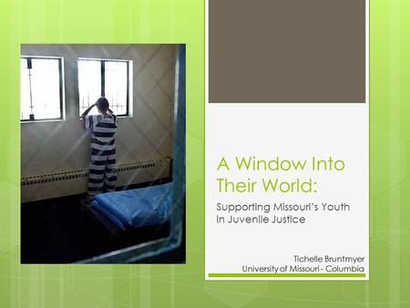 A Window Into Their World: Supporting Missouri's Youth in Juvenile Justice Tichelle Bruntmyer University of Missouri - Columbia.