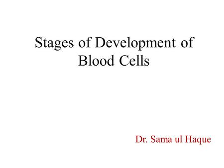 Stages of Development of Blood Cells Dr. Sama ul Haque.