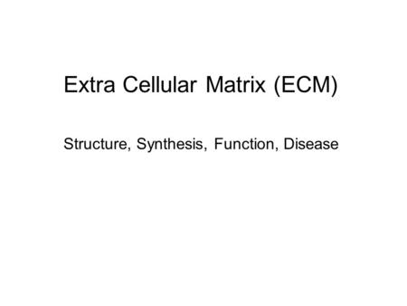Extra Cellular Matrix (ECM)