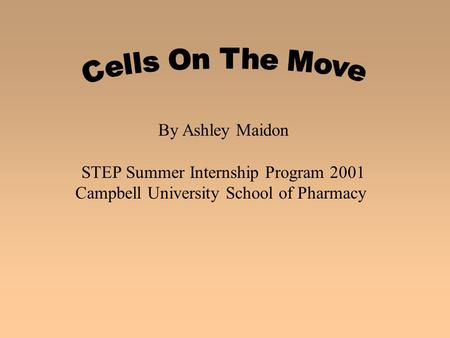 By Ashley Maidon STEP Summer Internship Program 2001 Campbell University School of Pharmacy.