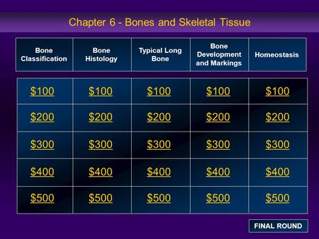 Chapter 6 - Bones and Skeletal Tissue
