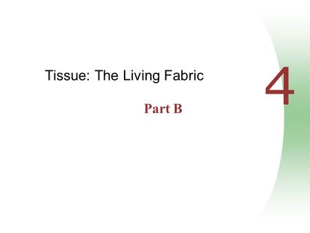 4 Tissue: The Living Fabric Part B. Modes of Secretion  Merocrine – products are secreted by exocytosis (e.g., pancreas, sweat, and salivary glands)
