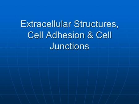 Extracellular Structures, Cell Adhesion & Cell Junctions.
