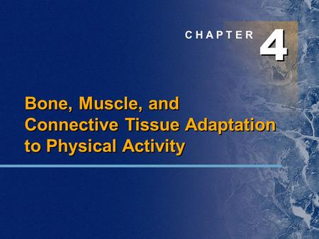 4 4 C H A P T E R Bone, Muscle, and Connective Tissue Adaptation to Physical Activity.