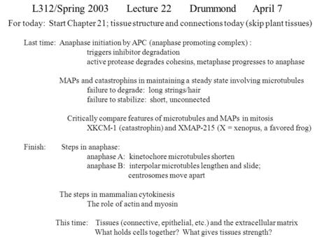 L312/Spring 2003Lecture 22Drummond April 7 For today: Start Chapter 21; tissue structure and connections today (skip plant tissues) Last time: Anaphase.