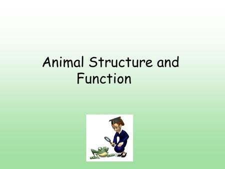 Animal Structure and Function. Functional Anatomy Animal adaptations evolved through time by natural selection. Can also adapt over short periods of time.