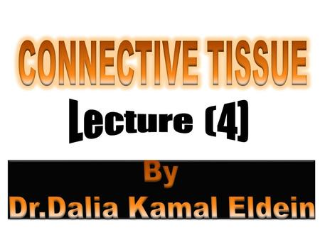  There are two main sub-classifications of connective tissue.  They are :- 1) connective tissue proper 2) specialized connective tissue.  Connective.