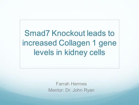 Smad7 Knockout leads to increased Collagen 1 gene levels in kidney cells Farrah Hermes Mentor: Dr. John Ryan.