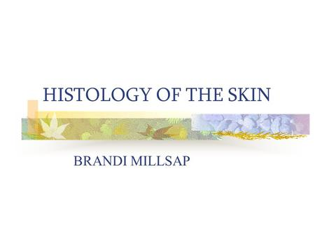 HISTOLOGY OF THE SKIN BRANDI MILLSAP Objectives Upon completion of this presentation, the learner will be able to perform the following objectives Match.