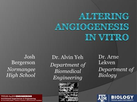 Dr. Alvin Yeh Department of Biomedical Engineering Dr. Arne Lekven Department of Biology Josh Bergerson Normangee High School.