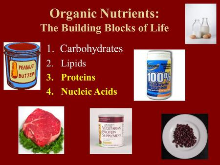 Organic Nutrients: The Building Blocks of Life 1. Carbohydrates 2.Lipids 3.Proteins 4.Nucleic Acids.