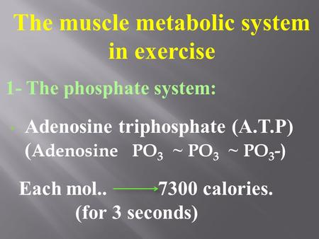 The muscle metabolic system in exercise 1- The phosphate system: Adenosine triphosphate (A.T.P) ( Adenosine PO 3 ~ PO 3 ~ PO 3 -) Each mol.. 7300 calories.