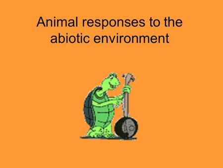 Animal responses to the abiotic environment. Biological orientation responses Behaviour by which animal positions self in relation to surroundings Taxes.