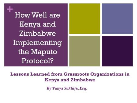 + How Well are Kenya and Zimbabwe Implementing the Maputo Protocol? Lessons Learned from Grassroots Organizations in Kenya and Zimbabwe By Tanya Sukhija,