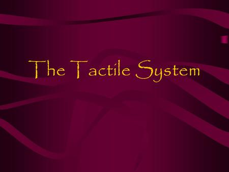 The Tactile System. 1.Overview The tactile system includes the nerves under the skin's surface The information sent to the brain includes light touch,