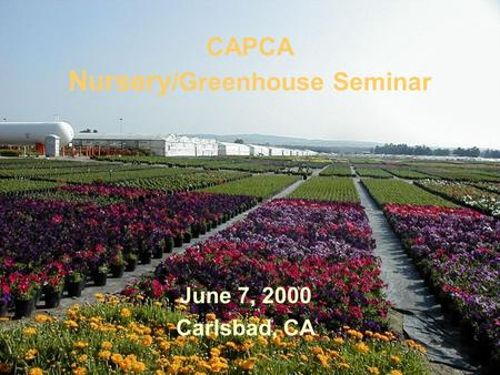 CAPCA Nursery /Greenhouse Seminar June 7, 2000 Carlsbad, CA.